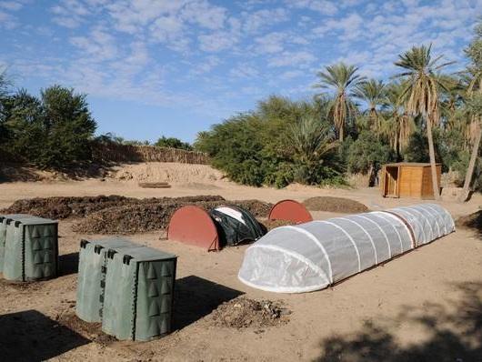 Progetto italo-tunisino per creare un'oasi verde a Tozeur