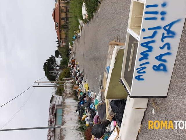 """Via Antonio Puccinelli, 91: """"Cartoline da Roma.."""""""