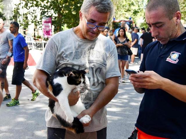 Il gatto Keba e gli altri animali recuperati nelle case degli sfollati dal crollo del ponte di Genova