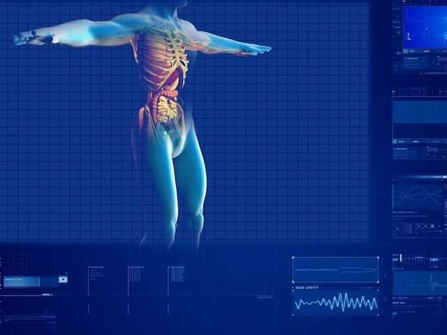 In arrivo l'atlante per 'ritrarre' un organismo sano: 65 i Paesi coinvolti nel progetto