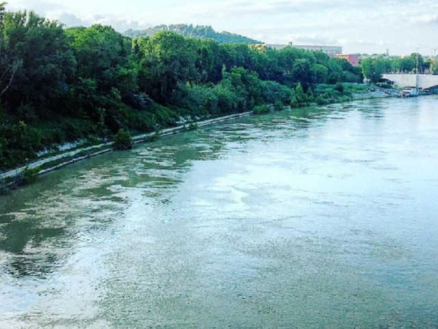 Allarme a Roma, spunta un coccodrillo nel Tevere: la testimonianza