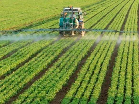 In Europa continuano ad aumentare le emissioni di ammoniaca, a causa dell'agricoltura