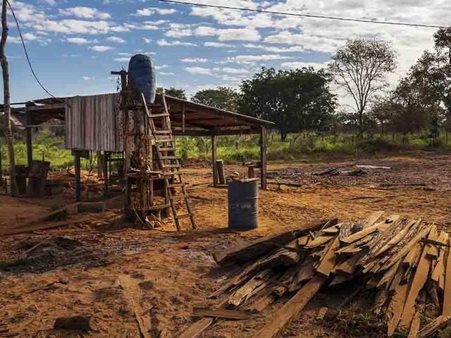 Allarme incendi in Amazzonia: non si ferma l'escalation dei roghi dolosi. Dietro lo spettro della criminalità organizzata i grandi gruppi industriali
