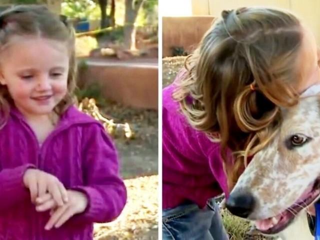 Neeva, la bambina sorda che impara a comunicare con il suo cane