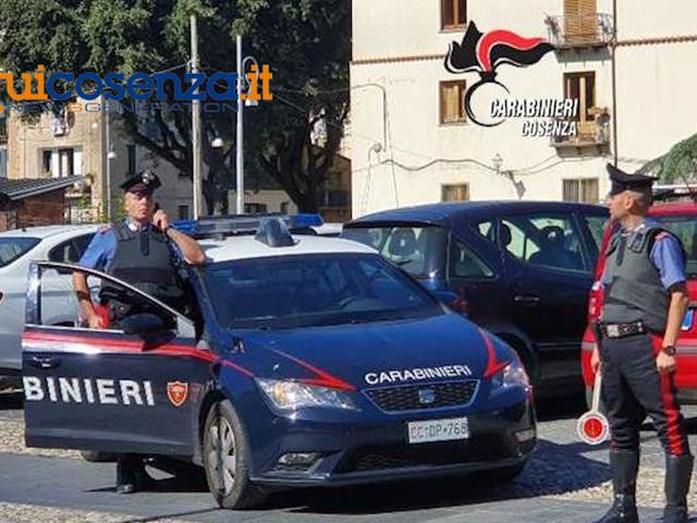 Tenta di rubare un pc da un'auto, arrestato 29enne cosentino