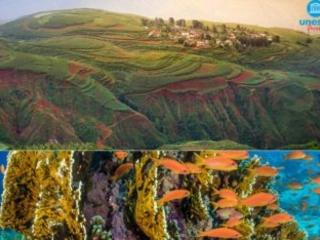Unesco: la biodiversità a rischio, minaccia la sopravvivenza umana (VIDEO)