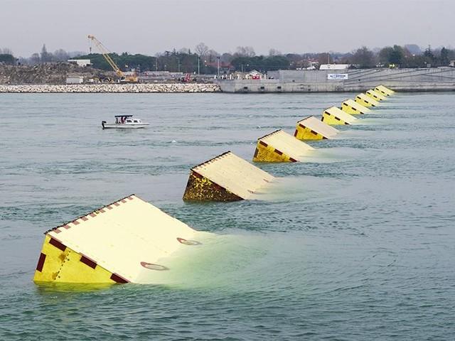 Nature: il Mose potrebbe distruggere l'ecosistema lagunare di Venezia