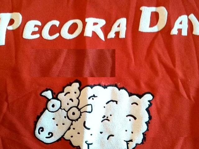Pecora Day: a Cori la manifestazione che celebra le antiche tradizioni pastorali