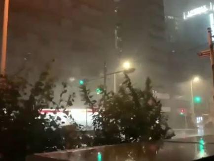 Tifone scaccia uragano Salta Italia-All Blacks È un ovale che va a rotoli