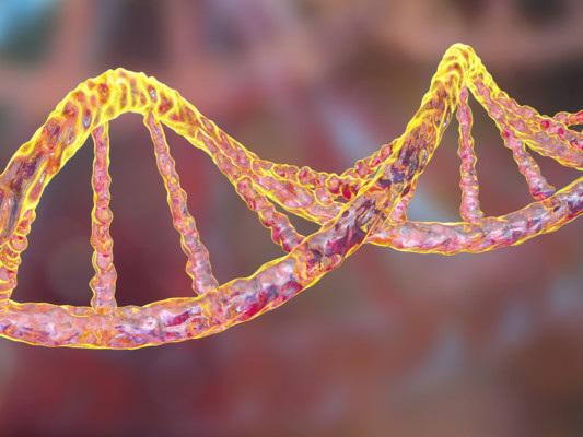 Come funziona il primo mercato online del patrimonio genetico