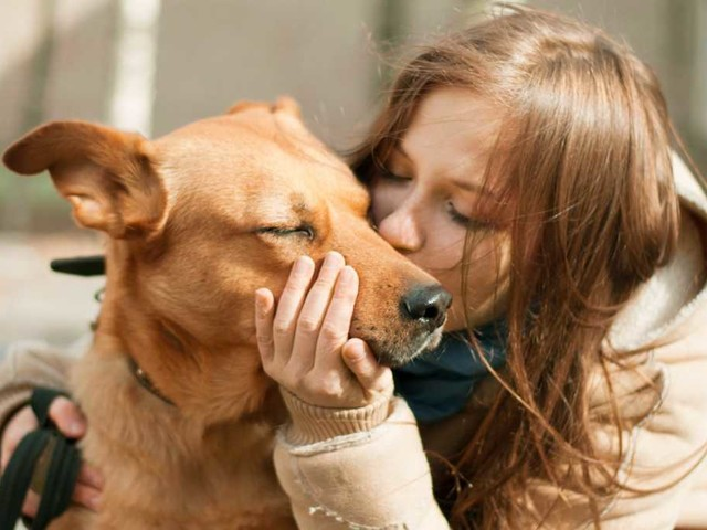 Cosa rende i cani così speciali? La scienza non ha dubbi: l'amore!
