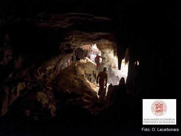 I Neanderthal del Mediterraneo occidentale non si sono estinti a causa dei cambiamenti climatici