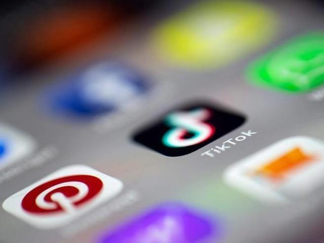 Tik Tok, allarme del Garante della privacy: «Serve una task force»