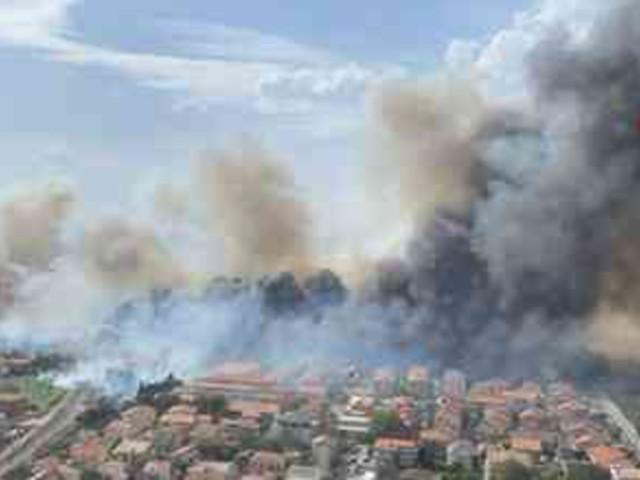 Incendi a Pescara: dall'alto, la pineta Dannunziana è un buco nero nel verde