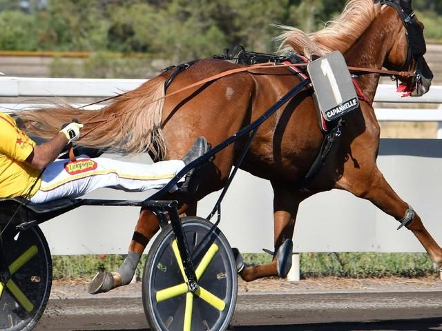All'Ippodromo San Paolo si elegge il campione italiano: i nomi dei 10 driver finalisti