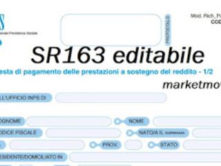 Modello INPS SR163 editabile 2020