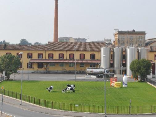 Latteria Soresina, sì al progetto di capitalizzazione Coldiretti: 'Scelta giusta'