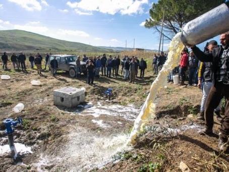 Latte Sardegna: si va verso una tregua pastori-governo
