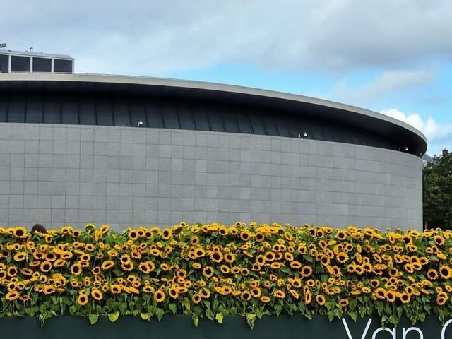Il museo di Van Gogh ad Amsterdam riapre dopo 171 giorni