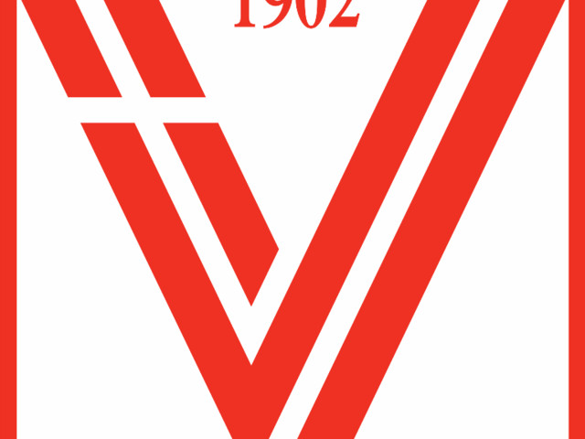 Il Vicenza è fallito, ma continuerà il campionato di Serie C