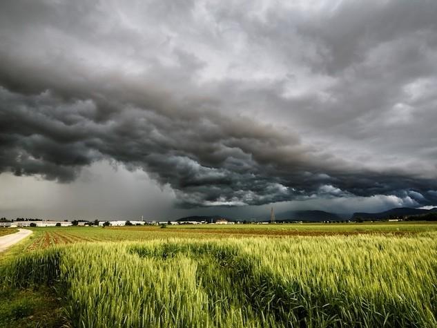 Il maltempo piega l'agricoltura italiana, a rischio un frutto su quattro