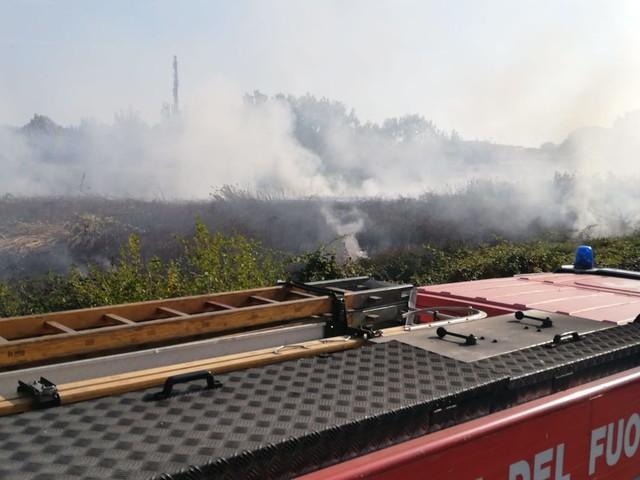 Ardea, incendio a Tor San Lorenzo: Vigili del Fuoco in azione