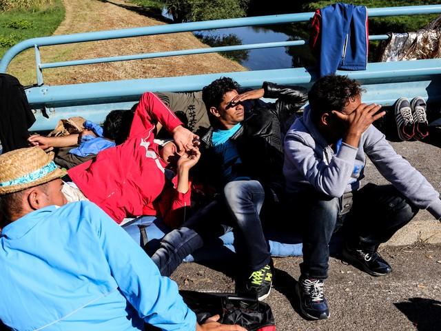 Falla nel reddito di cittadinanza: anche con un lavoro all'estero gli stranieri incassano il sussidio