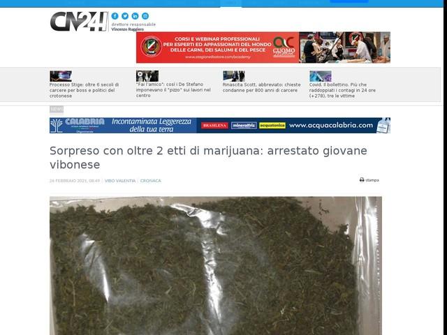 Sorpreso con oltre 2 etti di marijuana: arrestato giovane vibonese