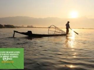 L'impegno dell'Italia all'Onu per azioni urgenti per la salvaguardia della biodiversità entro il 2030