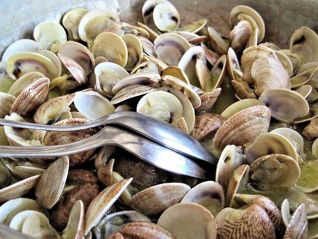 L'Ue stabilisce la grandezza delle vongole: a rischio la pesca in Italia