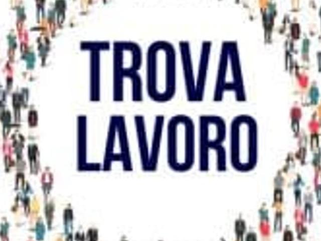 Lavoro, borse di studio e concorsi a Vicenza e provincia