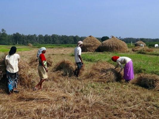 Mumbai: migliaia di agricoltori protestano contro le riforme del governo