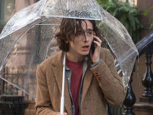 Un giorno di pioggia con Timothée Chalamet