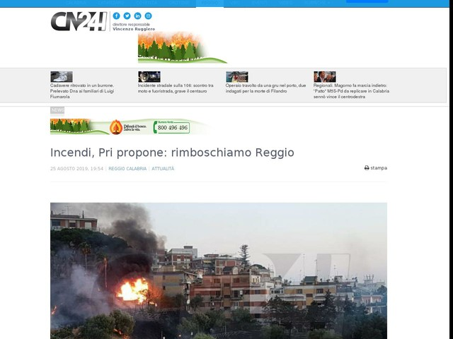 Incendi, Pri propone: rimboschiamo Reggio