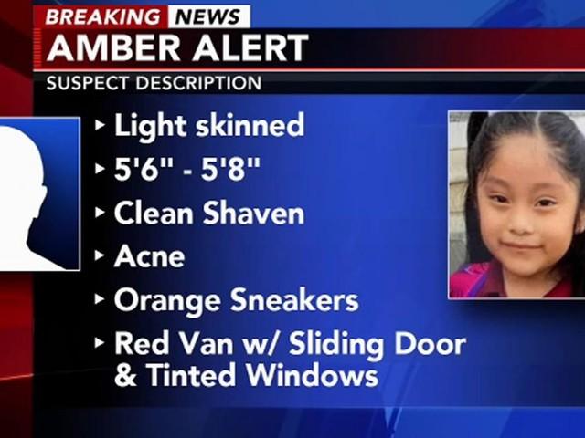 New Jersey, scomparsa bimba di 5 anni: sarebbe stata fatta salire su un furgone al parco