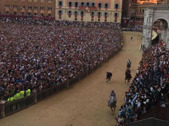 Palio Siena, vince la Selva con cavallo 'scosso'