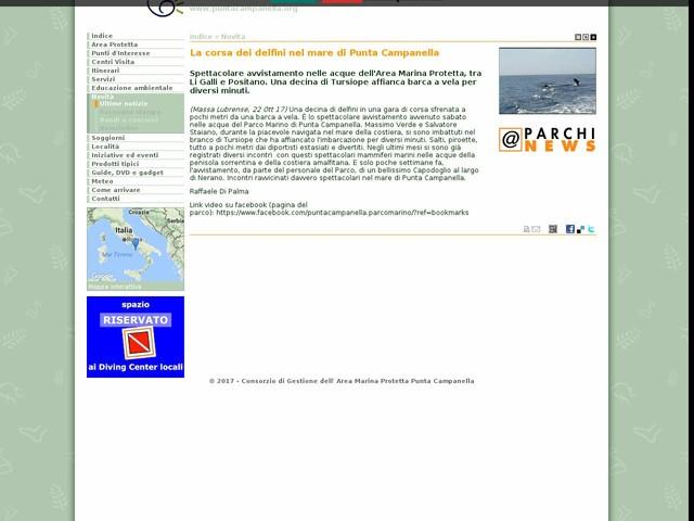 AMP Punta Campanella - La corsa dei delfini nel mare di Punta Campanella