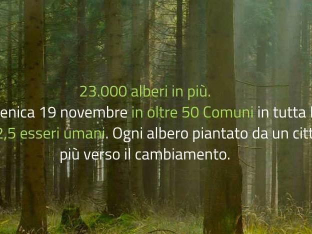 23.661 nuovi alberi per il futuro