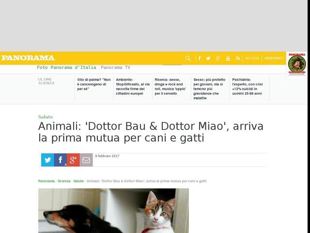 Animali: 'Dottor Bau & Dottor Miao', arriva la prima mutua per cani e gatti