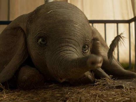 Dumbo, la versione live action di Tim Burton del classico Disney è un film a due facce (recensione)