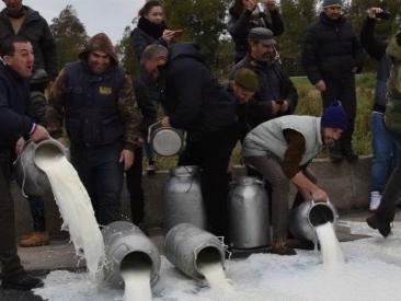 """Sardegna, dietro la protesta dei pastori lo sforamento delle quote di produzione del pecorino. """"Ora fatele gestire a noi"""""""