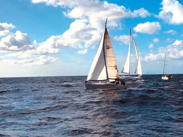 Trofeo Marina Yacht Club Tropea, la 1 regata del campionato Invernale di vela d'altura