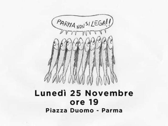 Le sardine arrivano a Parma: appuntamento il 25 novembre in Piazza Duomo