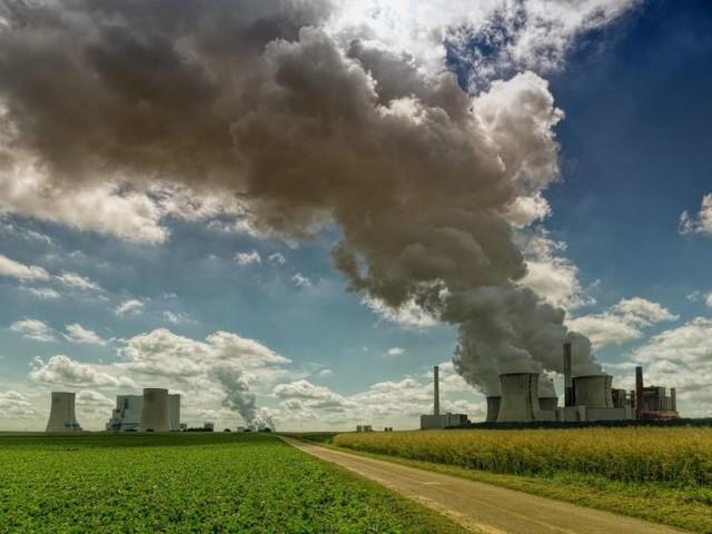 Per una ripresa migliore: green economy e lotta al cambiamento climatico per la ripresa post-Covid-19