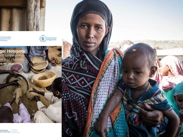 Fao e Wfp: fame acuta in crescita in oltre 20 Paesi