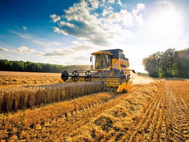 In 30 anni dalla Calabria è scomparso un quarto di tutto il terreno agricolo coltivabile