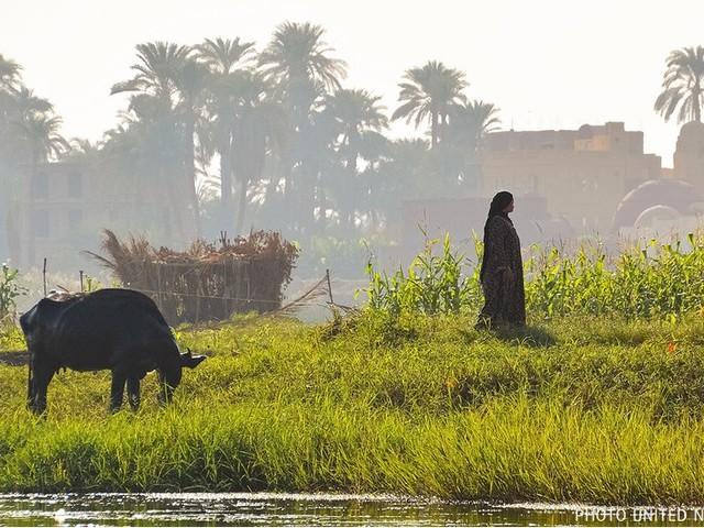 Cambiamento climatico, i Paesi poveri ai ricchi: «Niente più scuse alla COP26»