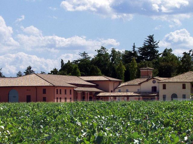 Tre Bicchieri 2020: in anteprima i vini migliori dell'Emilia Romagna