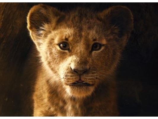 Box Office Italia: Il Re Leone supera i 21 milioni