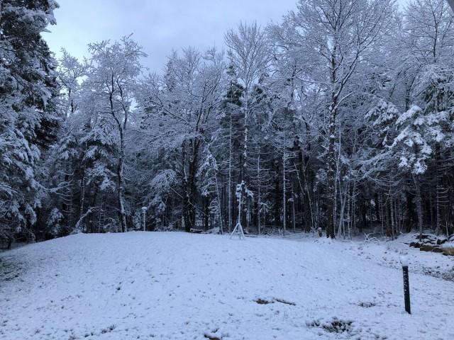Record storico di freddo a New York, neve nel Vermont, meteo anomalo negli Stati Uniti
